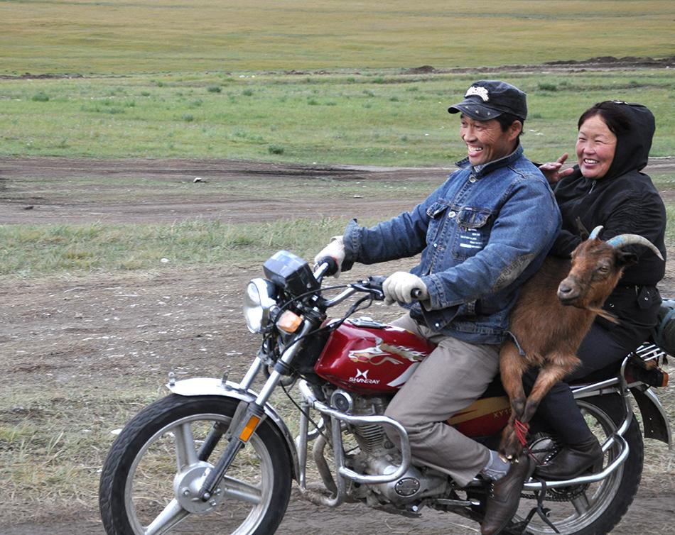 Viajando con la cabra a cuestas   Foto © carmen Borja