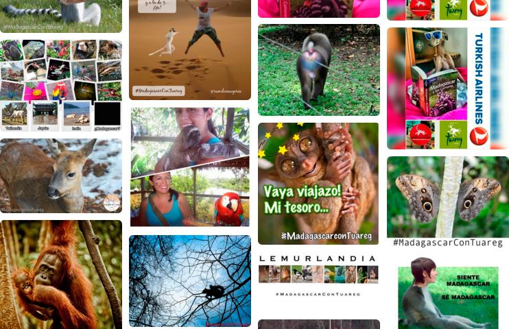 """Una pequeña muestra de las imágenes de la prueba """"Lemurlandia"""" de #MadagascarConTuareg"""
