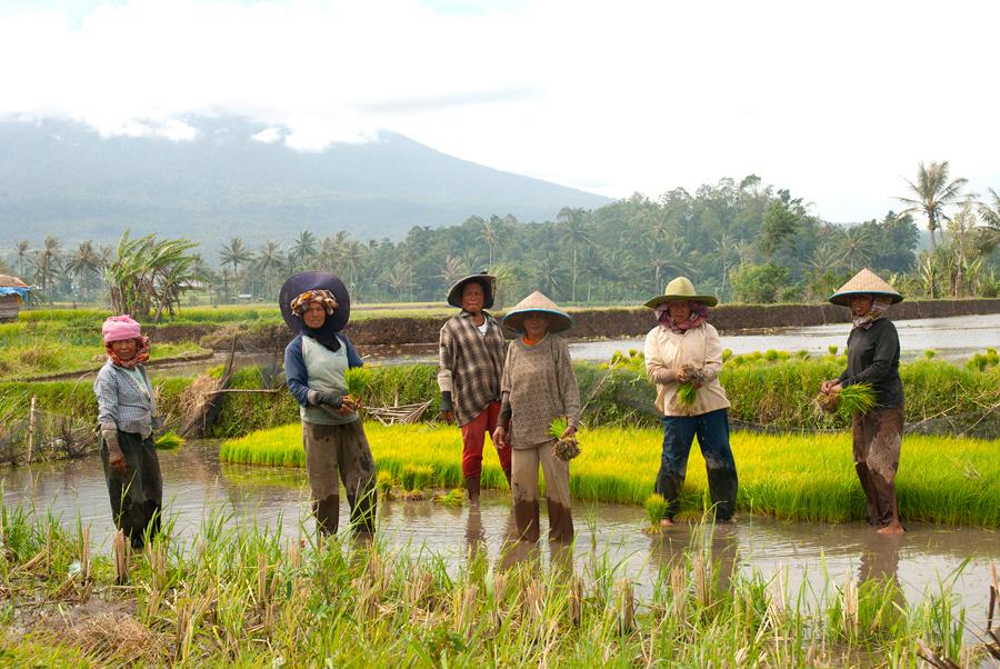 Campesinas en la ladera del monte Merapi, Sumatra | Foto © Anna Boyé