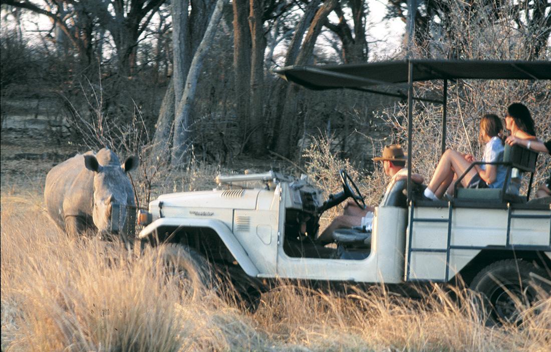 Encuentro con un rinoceronte en Zambia