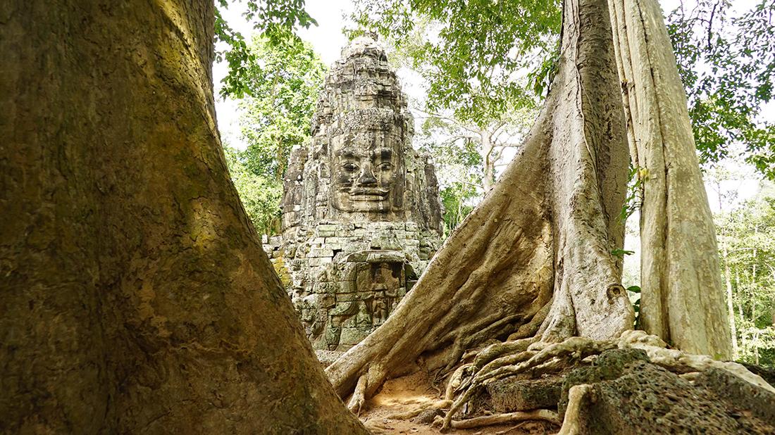 Camboya, El vigía | Foto © Joan Mas