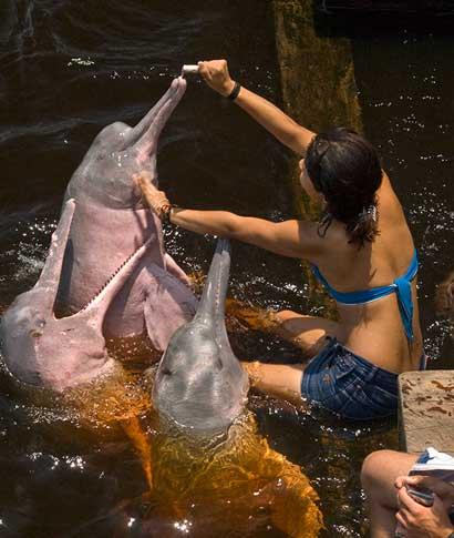 Acompañada por un biólogo especialista en fauna acuática tropical