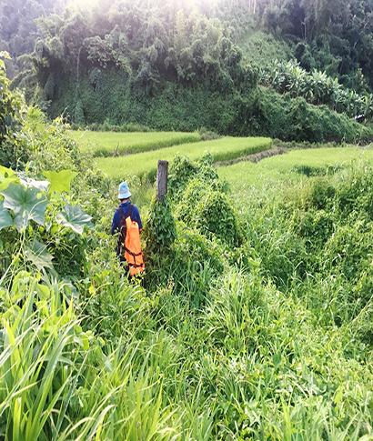 <br></p><br></p>¿Nos embarcamos en una caminata de varios días por las montañas del norte de Tailandia o ... <br> <a class='vermellteula'>Seguir leyendo >>></a>