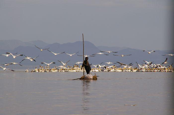fotos de Etiopía autor:Concha Tamarit