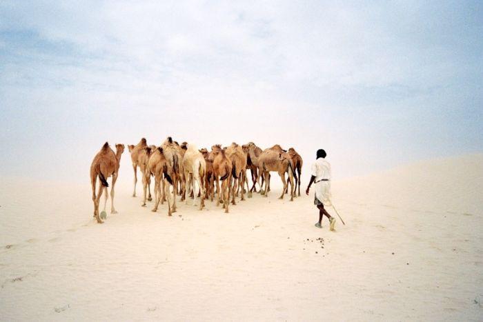 fotos de mauritania autor:Marta Vilanova