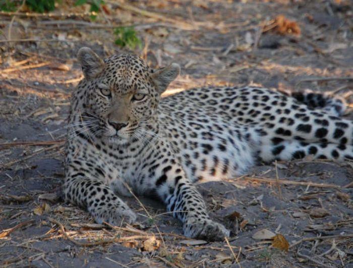 fotos de Namibia autor:Angel Zamarron