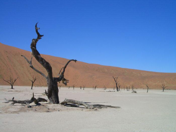 fotos de Namibia autor:Eva Ballano