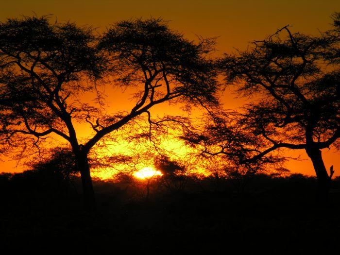 fotos de Namibia autor:Xavi Mazcaray