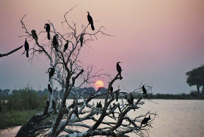 fotos de Namibia autor:N Muntane