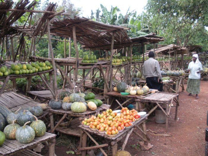 fotos de Rwanda autor:Inés Moreno