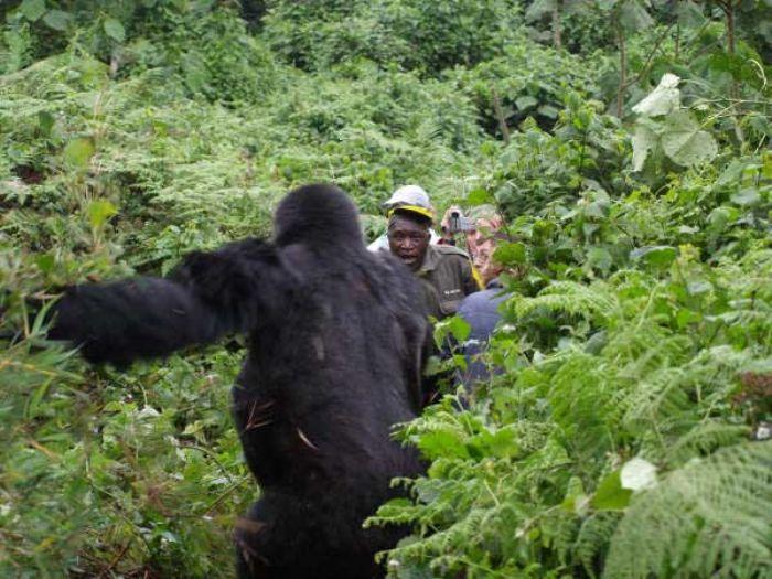 fotos de Rwanda autor:Victor Gil