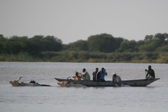 fotos de Senegal autor:Kim Costa