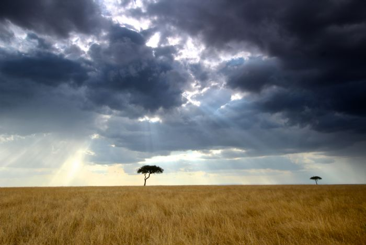 fotos de Tanzania autor:Vicenç Sanchez