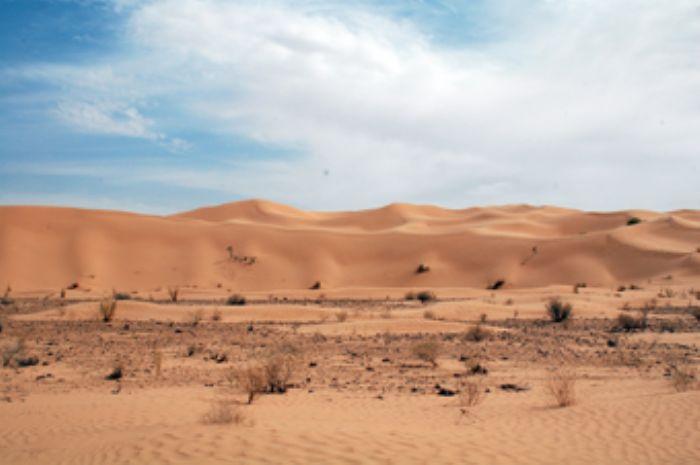 fotos de Túnez autor:Àlex Póo
