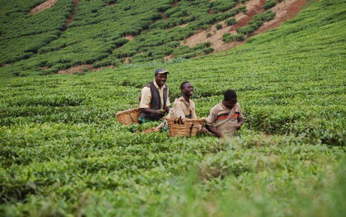 fotos de Uganda autor:L Jodas