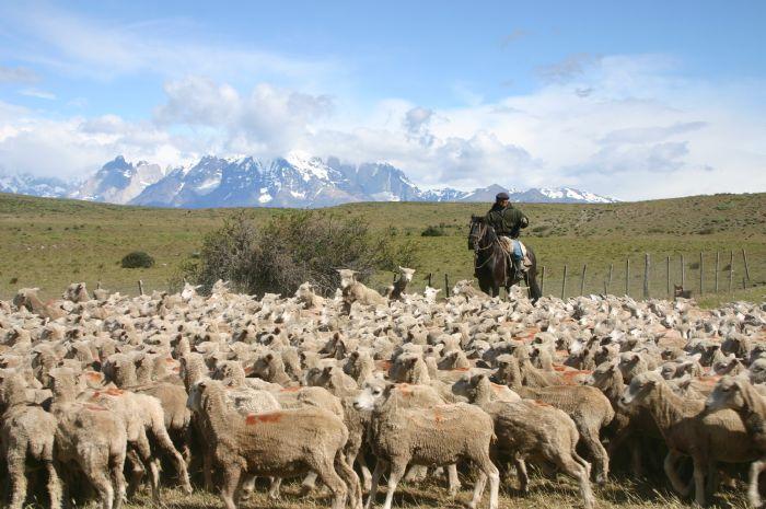fotos de Argentina autor:Archivo Tuareg