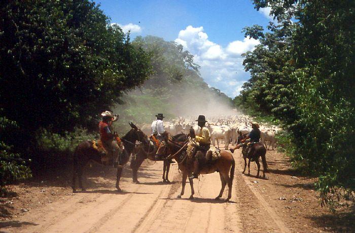 fotos de Brasil autor:Archivo Tuareg