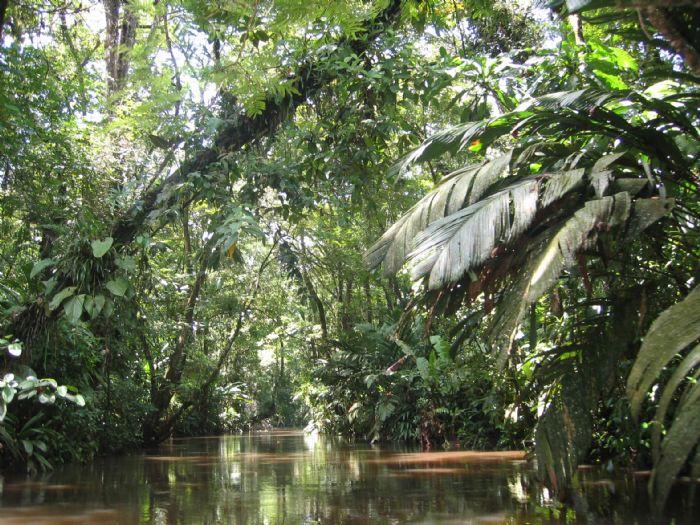 fotos de Costa Rica autor:Carme Riera