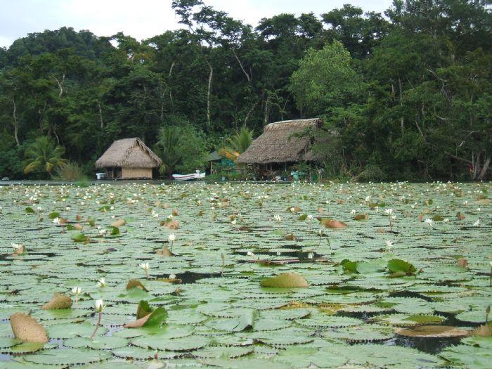 fotos de Honduras autor:Toni Carranza