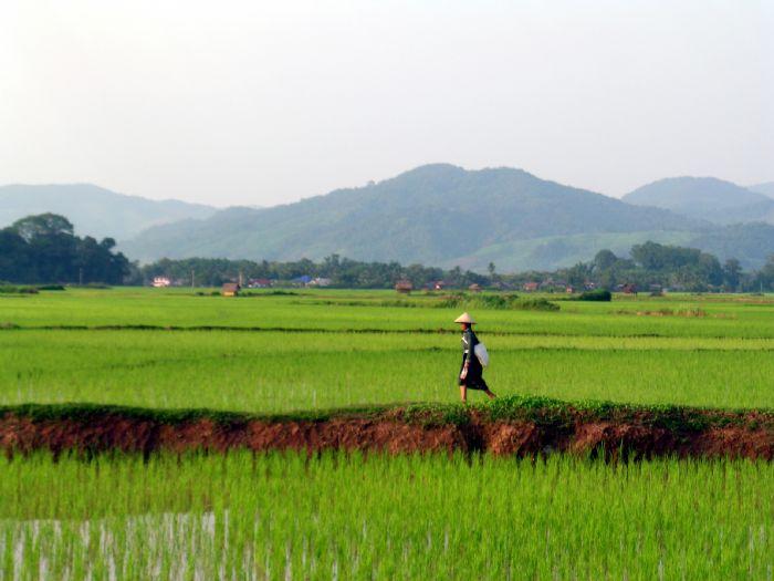 fotos de Laos  autor:Alex Serrano