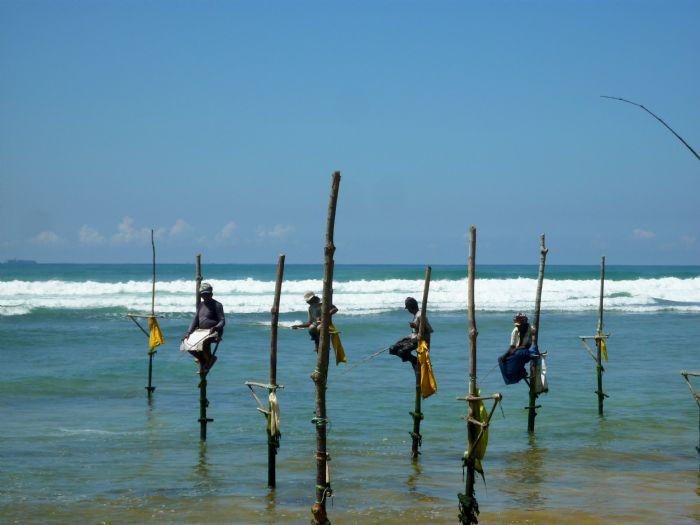 fotos de Sri Lanka autor:JBARTOMEU