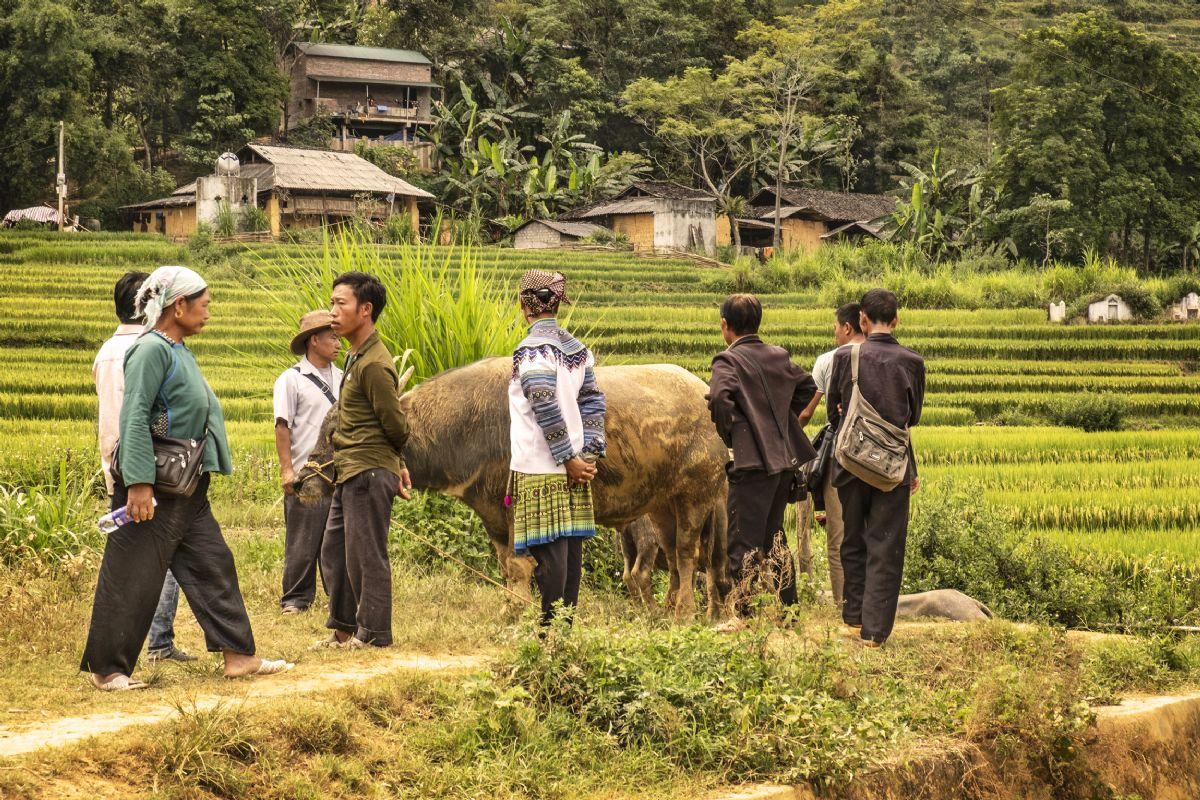 fotos de Vietnam autor:Juan Izquierdo