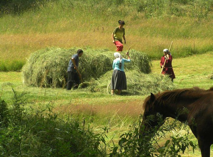 fotos de Bulgaria autor:Elena OCallahan