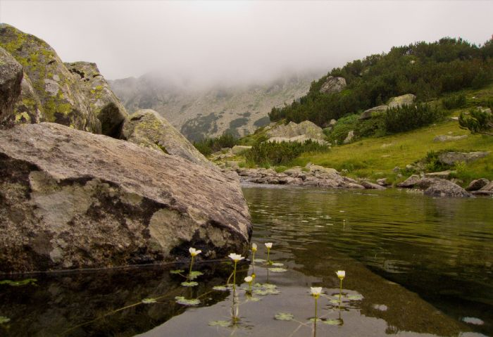 fotos de Bulgaria autor:Javier Gomez Perez