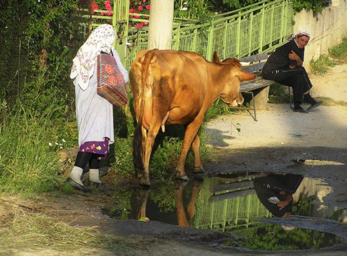 fotos de Bulgaria autor:P Mongay