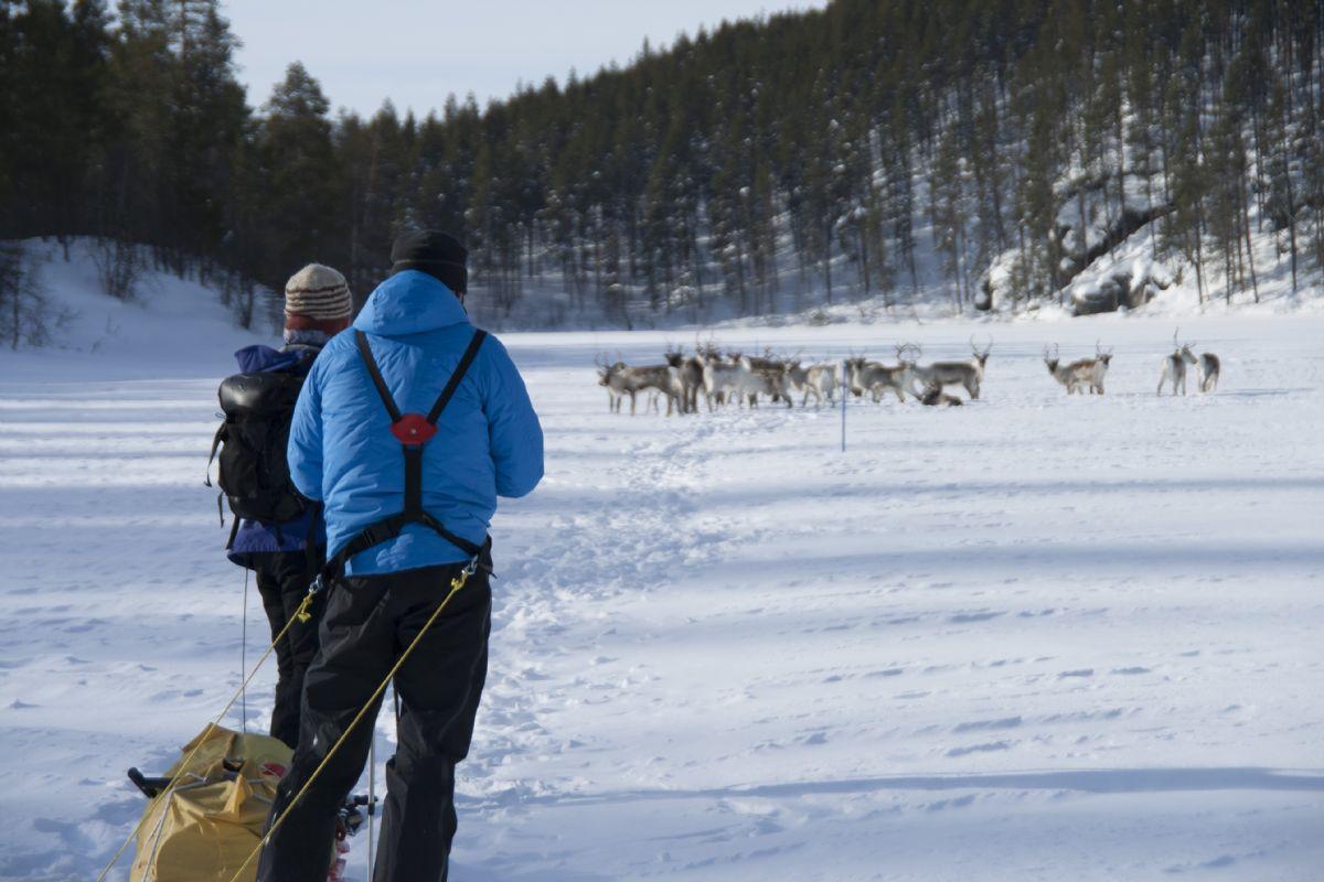 fotos de Finlandia autor:JM Prat