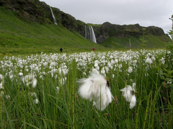fotos de Islandia autor:A. Gallego