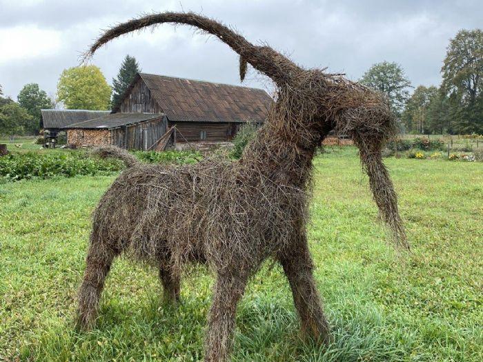 fotos de Lituania autor:Oficina Turismo Lituania