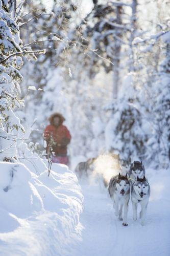 fotos de Suecia autor:Fredrik Broman