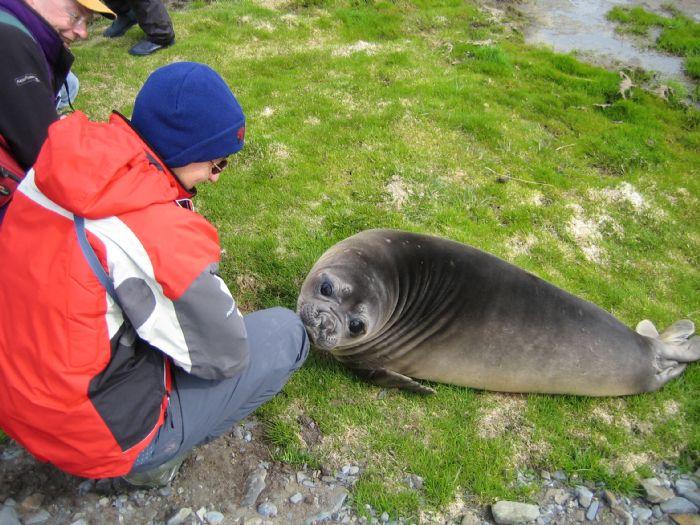 fotos de Antártida autor:Pilar Sierra