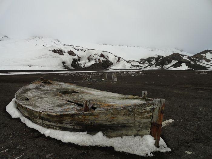 fotos de Antártida autor:Irene Martinez
