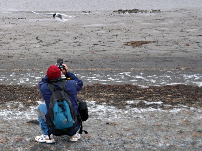 fotos de Ártico autor:Tuareg