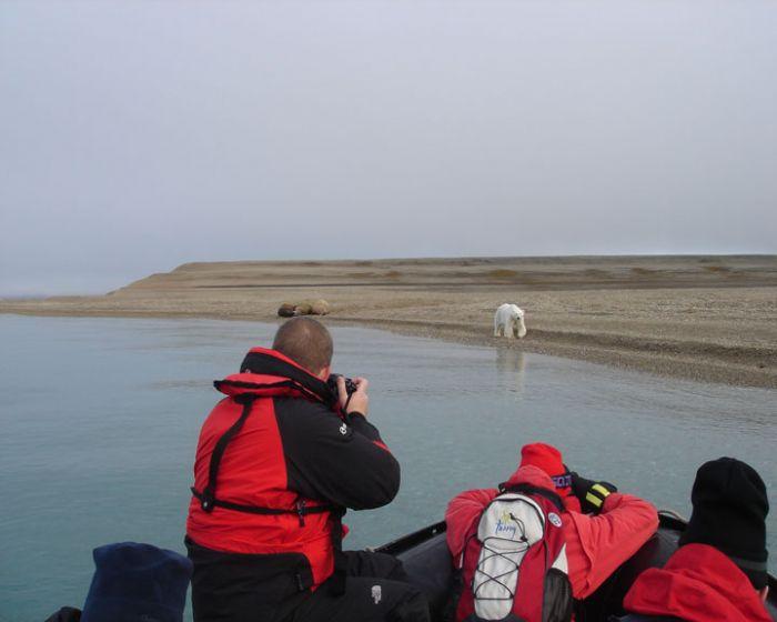 fotos de Ártico autor:Isabel Rodriguez