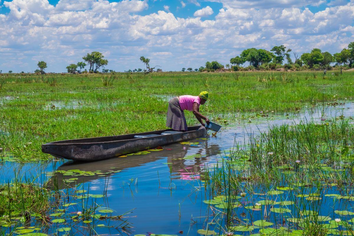 fotos de Safaris en África autor:Moivaro