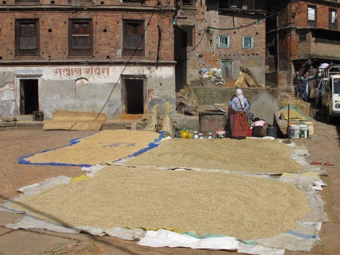 fotos del viaje a Nepal Valle Katmandú, Lagos Begnas y Pokhara, Ghorepani Trek y Safari en Chitwan autor:Joan Antoja