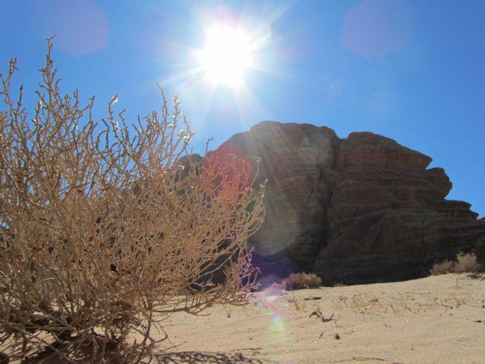 fotos del viaje a Jordania Petra, Mar Muerto y Wadi Rum autor:Jordi Lluelles