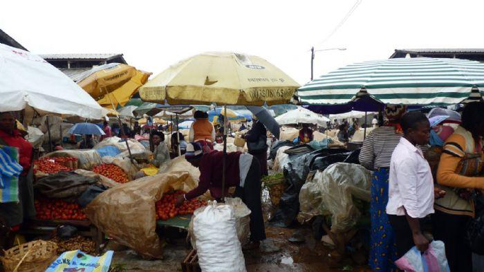 fotos del viaje a Camerún Etnias remotas autor:Paco González