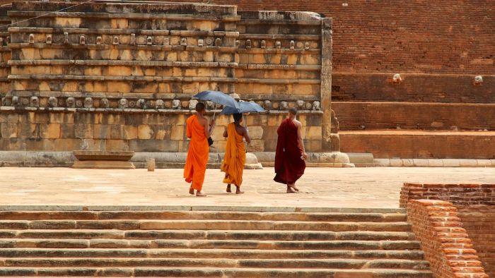 fotos del viaje a Sri Lanka Especial Festival Perahera autor:Jordi Molina