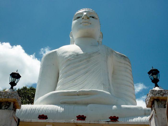 fotos del viaje a Sri Lanka La gran isla del Índico autor:Joan Bartomeu