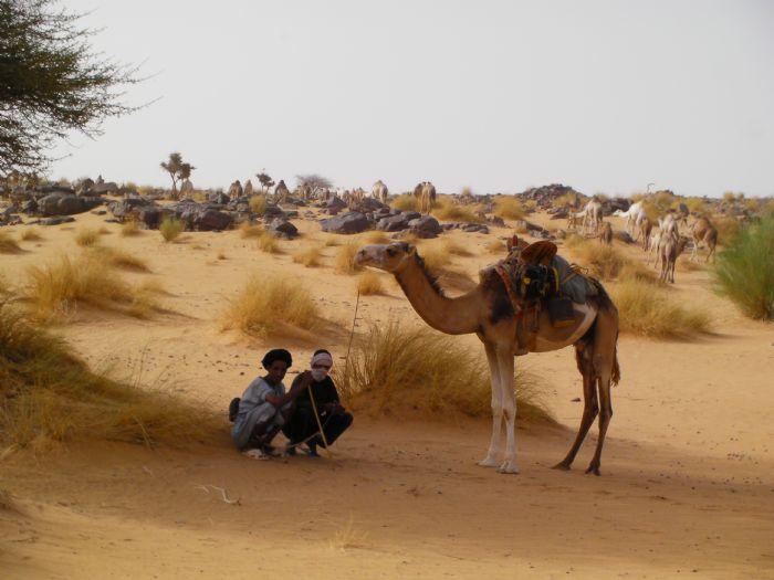 fotos del viaje a Mauritania Caravana en los oasis del Adrar.  autor:Monica Saez