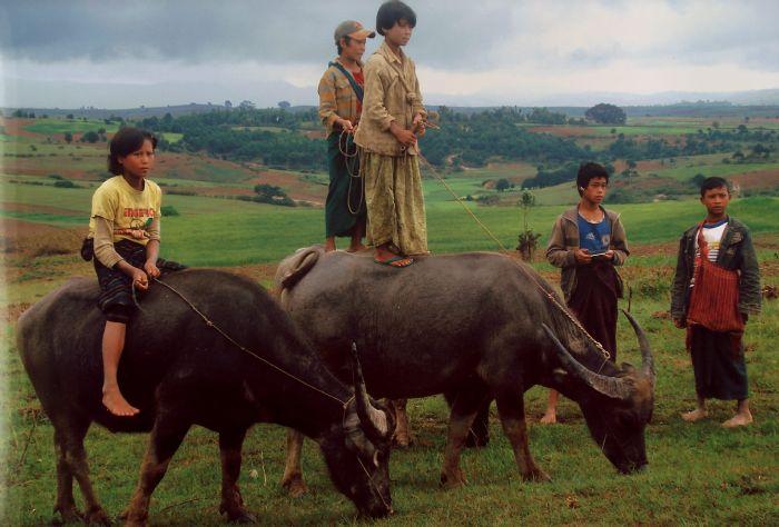 fotos del viaje a Myanmar  Año nuevo en Bagan, Yangon, Mandalay, Inle y minorías Kayah II autor:Nuria Codina Pla