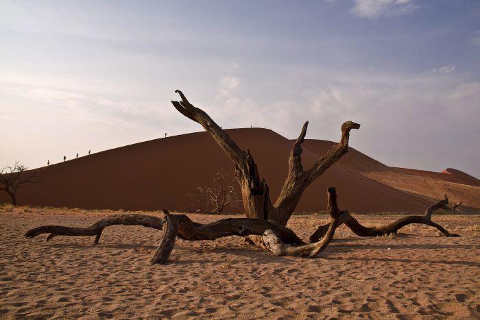 fotos de Namibia Observando la Vía Láctea. Safaris y Estrellas autor:Eduardo Barco