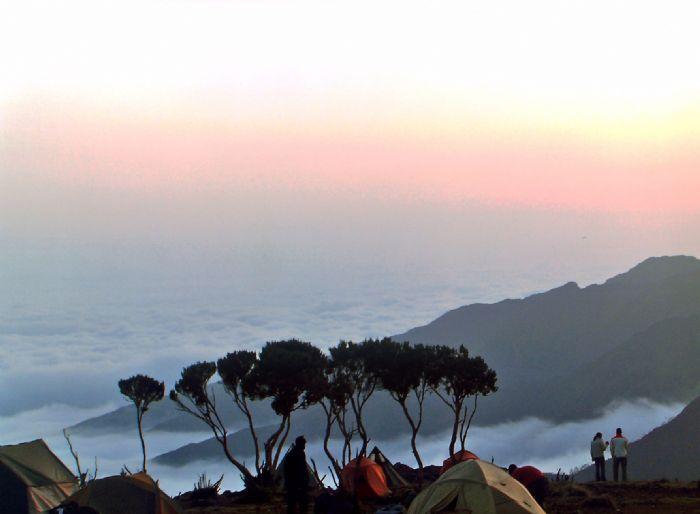 fotos del viaje a Tanzania Ascensión al Kilimanjaro: ruta Rongai autor:Ana Maria Antunez