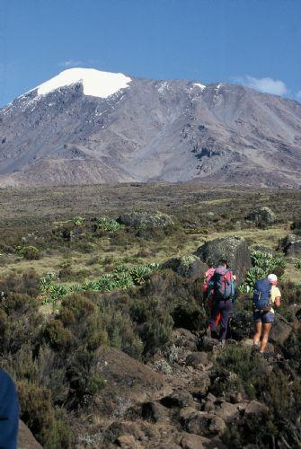 fotos del viaje a Tanzania Ascensión al Kilimanjaro: ruta Rongai autor:Andres Lopez