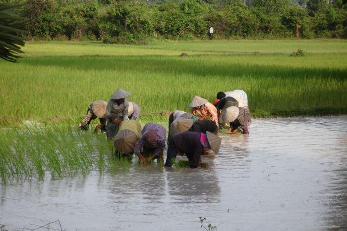 fotos del viaje a Vietnam y Angkor Minorías del norte, Halong, Hue, Delta y Angkor o Isla Phu Quoc autor:Gisela Jimenez