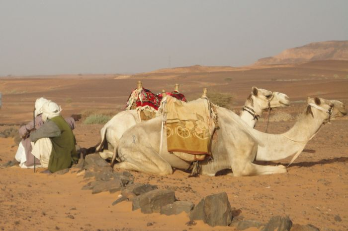 fotos del viaje a Sudán Los Faraones Negros. Ruta arqueológica y poblados nubios. autor:Matilde Moreno